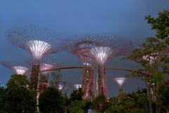 Scene di notte dei giardini dalla baia a Singapore Fotografia Stock Libera da Diritti
