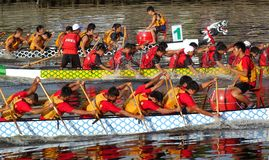 Scene from the 2015 Dragon Boat Races in Taiwan Royalty Free Stock Image