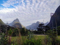 Scene from the End of Milford Sound Royalty Free Stock Images