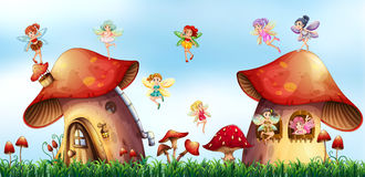 Scene with fairies flying around mushroom houses Stock Photography
