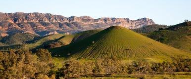 Scene in Flinders Ranges Australia. Nick named mount fuji stock photos