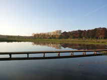 Scene of a forest with pond and path over the water Royalty Free Stock Photography