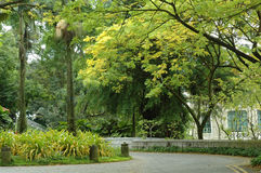 Scene - Fort Canning Hill Stock Images