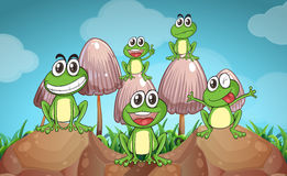 Scene with frogs and mushrooms Royalty Free Stock Photography