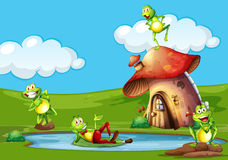 Scene with frogs in the pond. Illustration Stock Photography