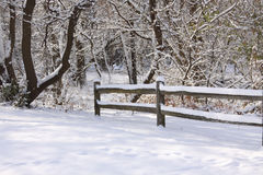 Scene with frosty fence after snow storm Royalty Free Stock Photography
