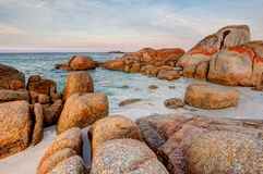 Scene of giant granite rock boulders covered in orange and red lichen at the Bay of Fires in Tasmania, Australia. The giant granite rock boulders covered in royalty free stock photo