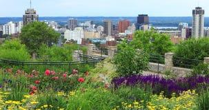 Scene of Hamilton, Canada, skyline with flowers in foreground 4K. A Scene of Hamilton, Canada, skyline with flowers in foreground 4K stock video footage