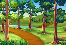Scene with hiking trail in the woods. Illustration Stock Photo