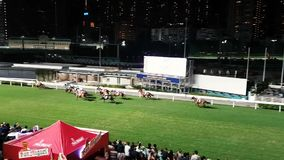 Hong Kong race course. Scene from Hong Kong Asia of race course horses running stock video footage