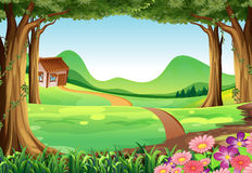 Scene with house in the field Royalty Free Stock Image