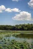 Scene of imperial park, Beijing Royalty Free Stock Image