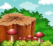Scene with log and mushroom in garden Stock Photo
