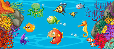 Scene with many fish underwater Royalty Free Stock Image