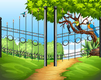 Scene with metal fence and birds on tree Royalty Free Stock Photos