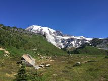 A scene from Mount Rainier in Washington state Stock Photos