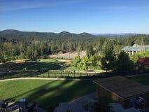 A scene from Mt Rainier in Washington state Stock Image