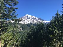 A scene from Mt Rainier in Washington state Royalty Free Stock Photos