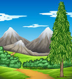 Scene with mountain and field Royalty Free Stock Images