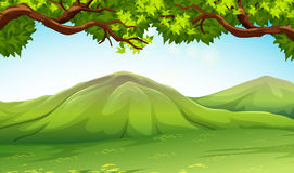 Scene with moutains and trees. Illustration Stock Image