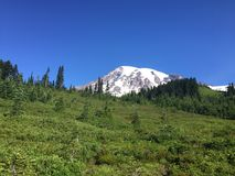 A scene from Mt Rainier in Washington state Stock Photo