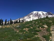 A scene from Mt Rainier in Washington state Royalty Free Stock Images