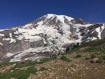 A scene from Mt Rainier in Washington state Royalty Free Stock Photo