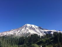 A scene from Mt Rainier in Washington state Stock Photos