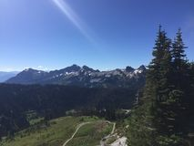 A scene from Mt Rainier in Washington state Stock Photography