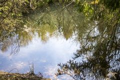 A scene of natural water. In a german forest in the tourist area Sauerland Stock Photo