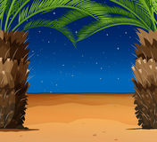 Scene with palm trees on the beach Stock Image