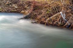 Scene with pollution of the riverbank full of garbage royalty free stock photography