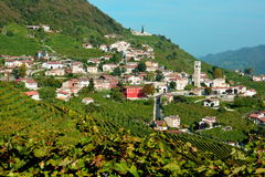A scene from the Prosecco Highway Royalty Free Stock Images