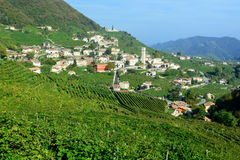 A scene from the Prosecco Highway Royalty Free Stock Photo