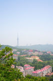 A scene of Qingdao Stock Image
