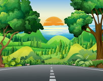 Scene with road and forest Royalty Free Stock Images