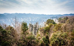 Scene of rock mountain in Zhangjiajie National Forest Park,Hunan Royalty Free Stock Images