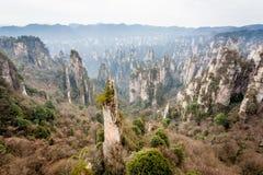 Scene of rock mountain in Zhangjiajie National Forest Park,Hunan Royalty Free Stock Photography