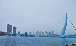 Scene in Rotterdam,Holland Royalty Free Stock Photography