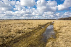 Scene with rut road in steppe Royalty Free Stock Image