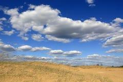 Scene in sandy desert. Nice summer scene in sandy desert Royalty Free Stock Photos