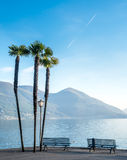 Scene side of Lake Maggiore in Switzerland. Outdoor scene view side of Lake Maggiore with bench, palm tree and flag in Locarno, Switzerland Royalty Free Stock Photography