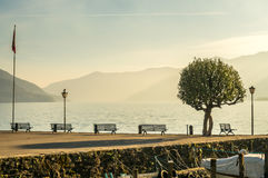 Scene side of Lake Maggiore in Switzerland. Outdoor scene view side of Lake Maggiore with bench, palm tree and flag in Locarno, Switzerland, in evening light Stock Photography
