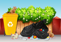 Scene with trash bags and rats Royalty Free Stock Images