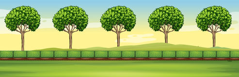 Scene with trees and field. Illustration Royalty Free Stock Photography