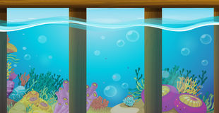 Scene with underwater and coral reef. Illustration Royalty Free Stock Photos