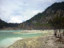 Scene and vegetation in crater Kawah Putih Stock Photo