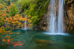 Scene with waterfall and orange maple branch Stock Image