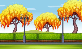 Scene with willow trees in the park Royalty Free Stock Photography