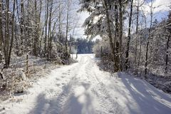Scene at winter with snow and ice on small road Stock Images